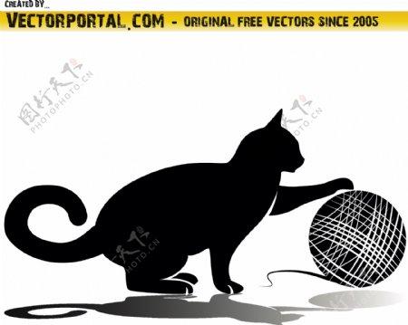 玩毛线的猫