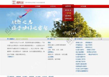 公司网站设计中文模板21图片