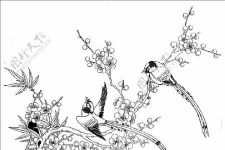 花鸟花纹花边