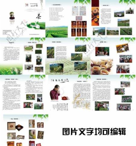 茶文化茶叶画册