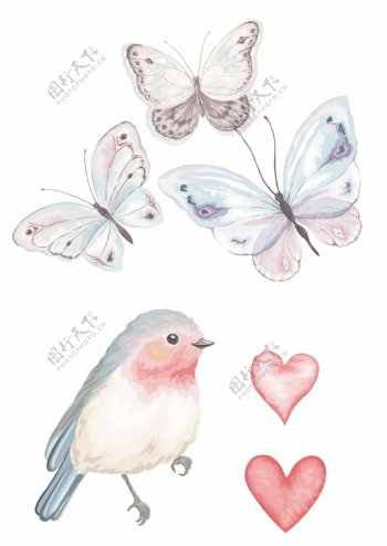 水彩彩绘鸟蝴蝶