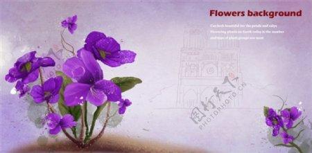 紫色蝴蝶花图片源文件