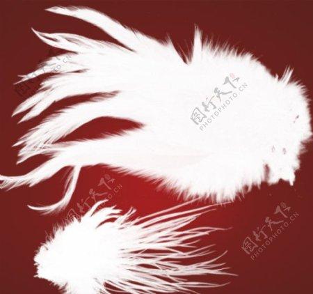 另类光束翅膀笔刷