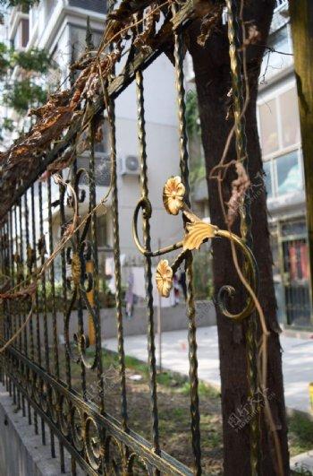 围栏金色围栏