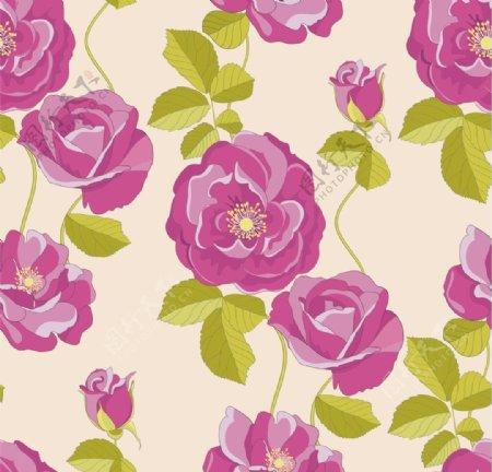 手绘紫色花卉矢量素材cdr