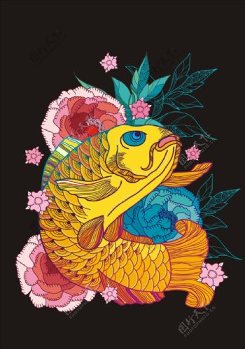 锦鲤鱼矢量图下载