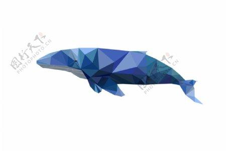 鲸鱼矢量图