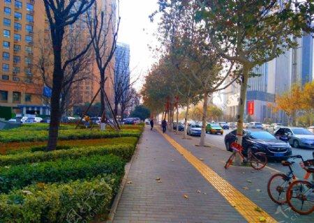 城市道路风景