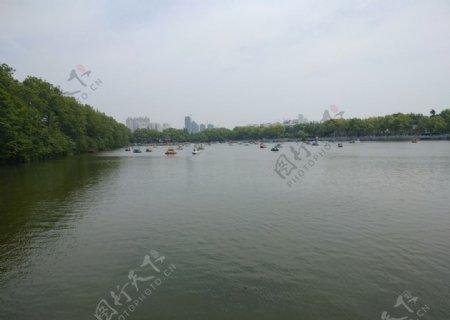 江边河滩江水