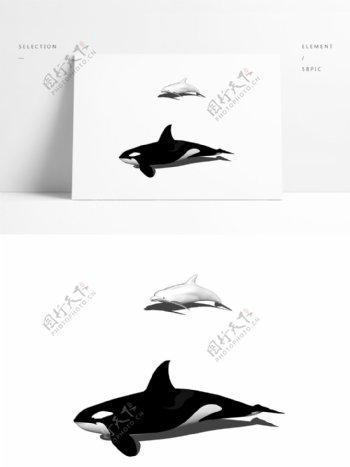 海洋动物模型两个