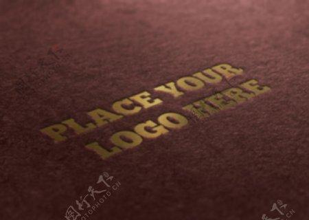 纹理logo效果图