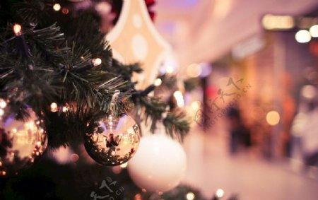 圣诞树局部背景