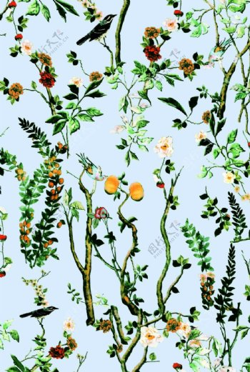 花卉动物树枝