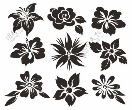 各种花朵矢量元素