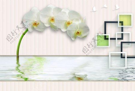 蝴蝶白鸽梅花背景墙