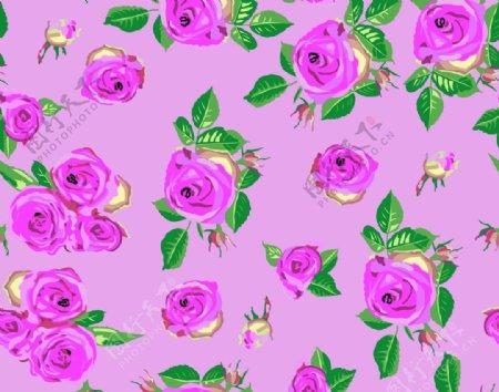 手绘玫瑰粉