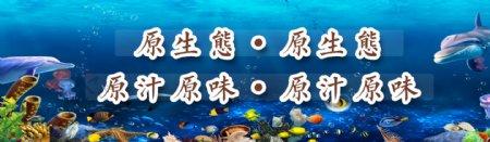 海底世界海洋世界海洋鱼
