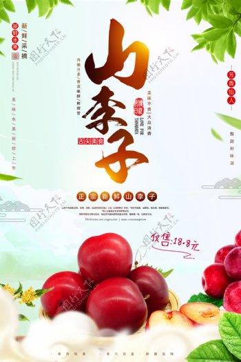 清新山李子水果促销