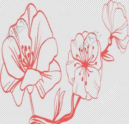 手绘植物花卉图片