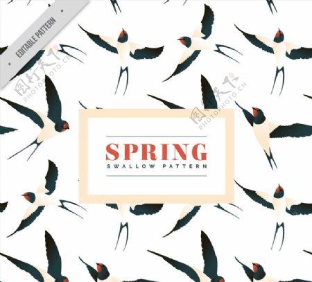 春季燕子无缝背景图片