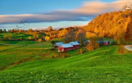 美丽的草原风景图片