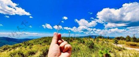 草原上的大风车图片