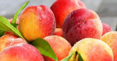 新鲜的桃子图片