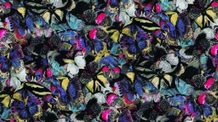 斑驳密集乱排缤纷蝴蝶印花图案图片