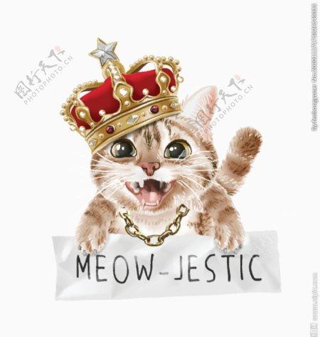 皇冠猫图片