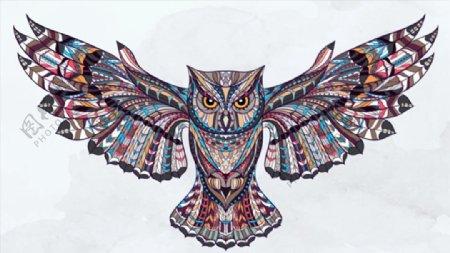 猫头鹰纹身插画图片