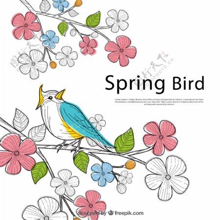 花枝上的小鸟图片