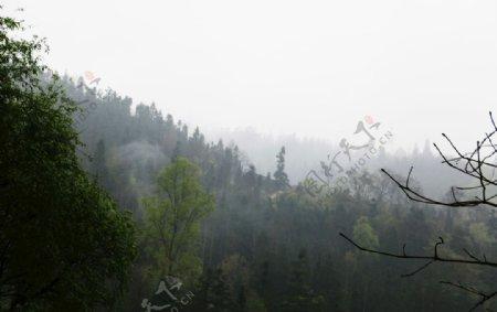 山间风景春天复苏图片