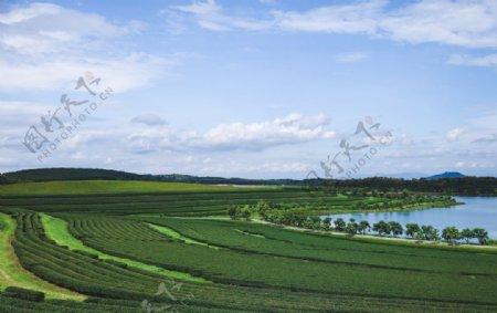 田园山水风景图片
