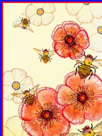 蜜蜂花朵图片