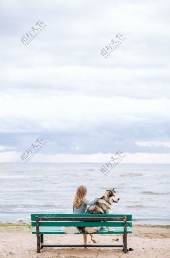 陪伴犬与女性图片