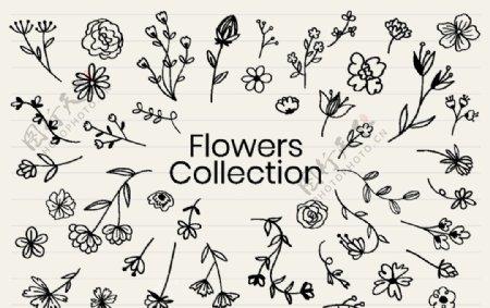 手账手绘花卉矢量素材图片