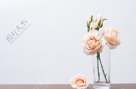 花瓶里的黄色玫瑰拍摄图片