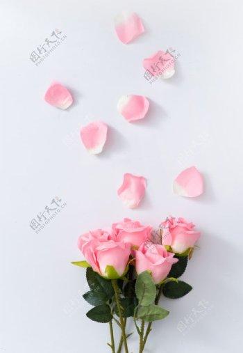 粉色玫瑰花花束花瓣图片