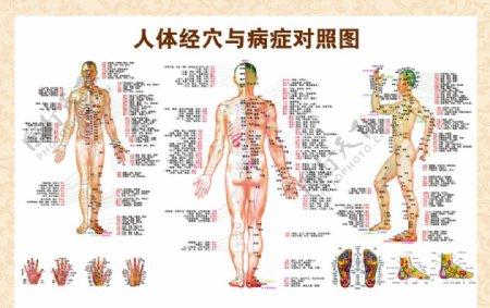 人体穴位与病症对照图图片
