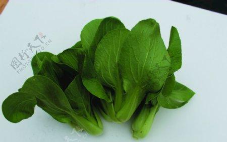 蔬菜白菜瓢耳白图片