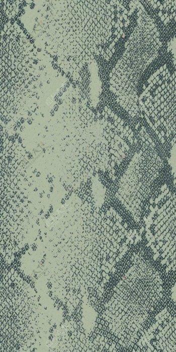 蟒蛇纹蛇纹印花图片