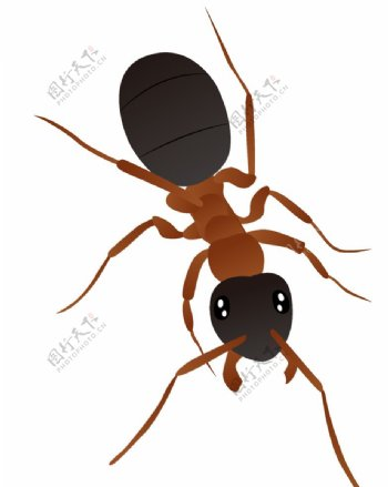 矢量卡通蚂蚁图片