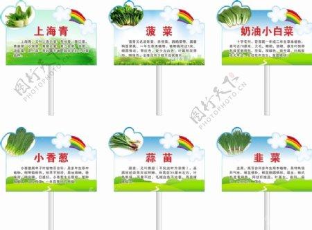 蔬菜牌图片