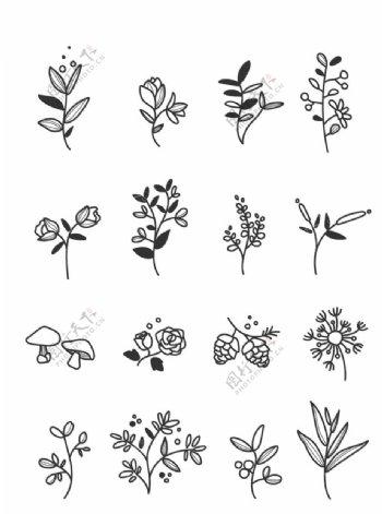 植物花卉线稿图图片
