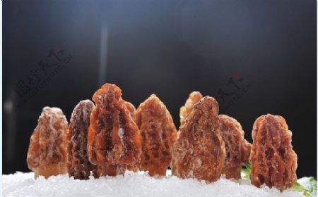 羊肚菌图片