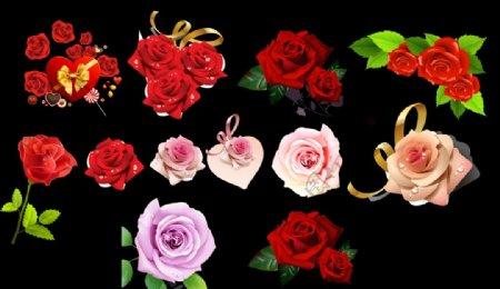 玫瑰花素材图片