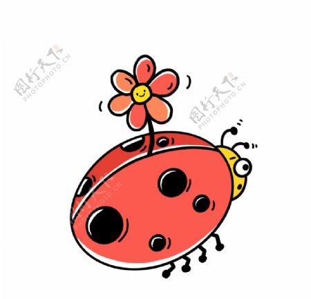 手绘可爱瓢虫图片