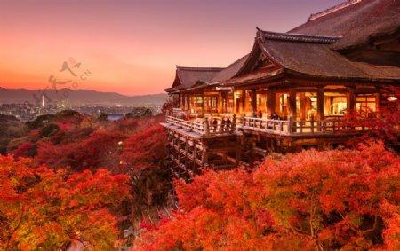 红叶树中的楼阁建筑图片