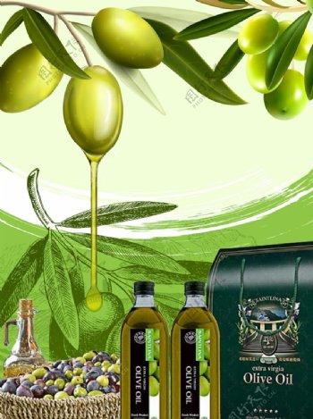 橄榄油广告海报包装图片