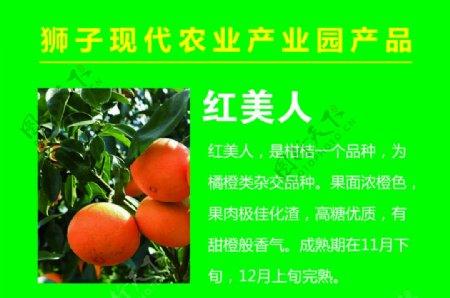 农业产品图片